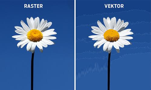 Razlika-raster-vektor